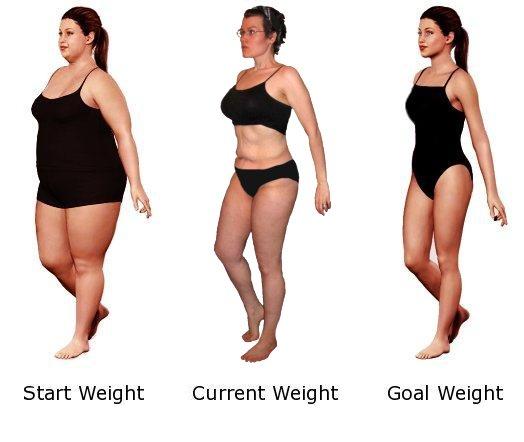 Fat loss evidence